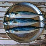три свежих рыбины скумбрии на блюде