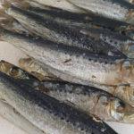 сушеная рыба иваси
