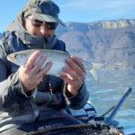 рыбак с сигом в руках