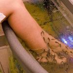 ванна для ножек с рыбками гарра руфа