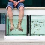 пилинг рыбками в косметическом салоне