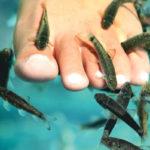пиллинг ступни рыбками гарра руфа