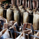 подвешенные тушки копченой рыбы