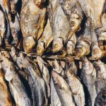 вяленая рыба, виды