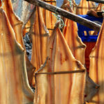 вяленая рыба, порт