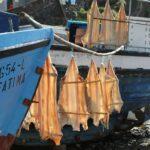 вяленая рыба в порту