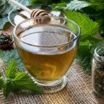 чай из сухих листьев крапивы