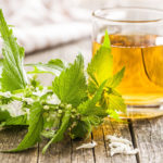 чай из крапивы, польза и вред