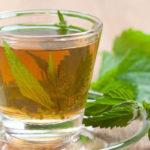 чай из листьев и цветов крапивы