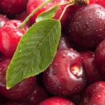 вишни ягоды и лист