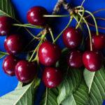 крупная вишня, черешня и листья