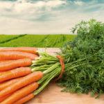 как приготовить морковный чай