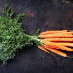 пучок моркови с ботвой