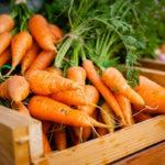 урожай моркови в ящике