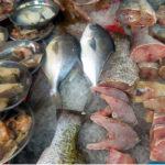 свежая рыба, кусочки и тушки