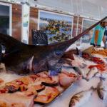 вредная рыба-меч
