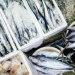 мороженая рыба