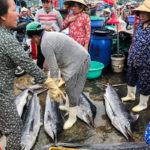 вредная рыба на рынке
