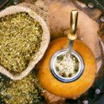 сухой и заваренный в калебасе чай мате